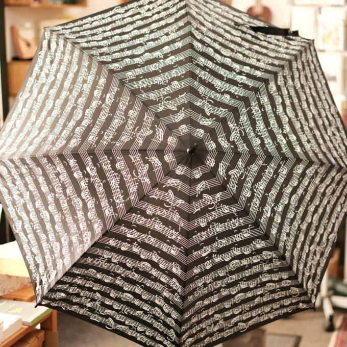 Regenschirm Musik Noten schwarz weiss Stockschirm 2