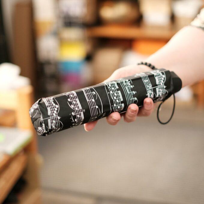 Regenschirm Musik Noten schwarz weiss Taschenschirm