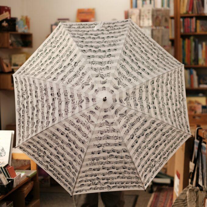 Regenschirm Musik Noten weiss schwarz Stockschirm 3